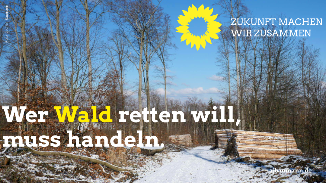 Wer Wald retten will, muss handeln.